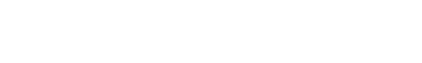 Assignment Essays logo